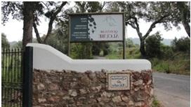 Visita à Quinta do Alcube em Azeitão