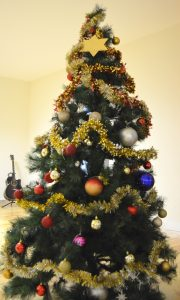 Festa de Natal 2016 da Casa do Educador,Unisseixal e CesViver
